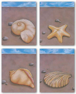 Sand, Shell and Sky Set by Phyl Schock