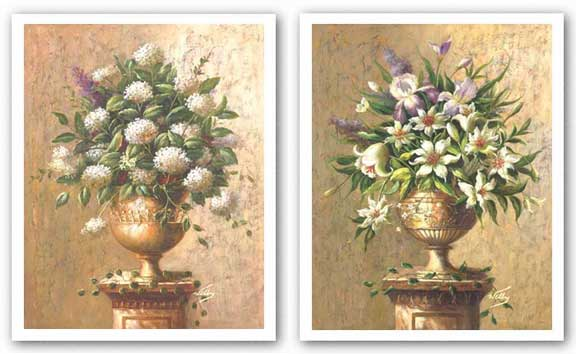 Floral Expressions Set by Welby