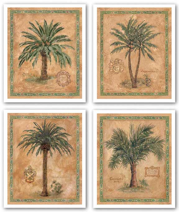 Palm Carpoxylon-Phoenix Reclinata-Cocos Nucifera-Phoenix Canariensis Set by Betty Whiteaker