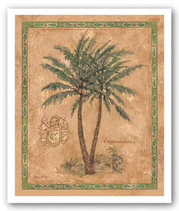Cocos Nucifera by Betty Whiteaker