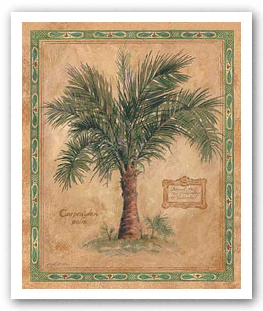 Palm Carpoxylon by Betty Whiteaker