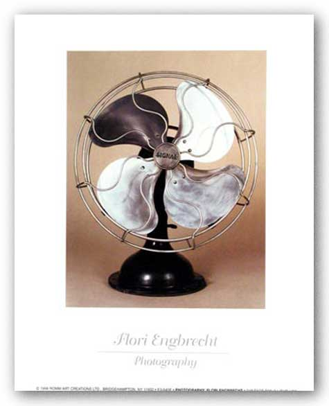 Vintage Fan I by Flori Engbrecht