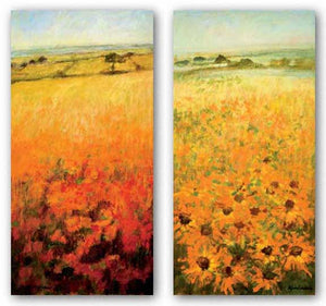 Field With Sunflowers and Field With Poppies Set by Ken Hildrew