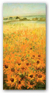 Field With Sunflowers by Ken Hildrew
