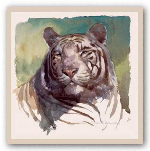 Tiger Portrait by Stan Kaminski