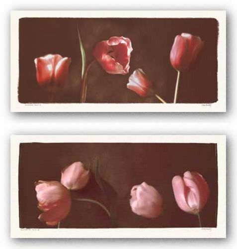 Illuminating Tulips Set by Judy Mandolf