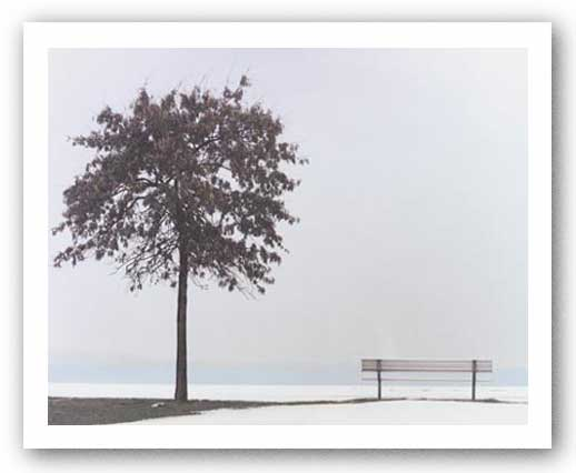 Bench: Oyster Bay, NY by Maya Nagel