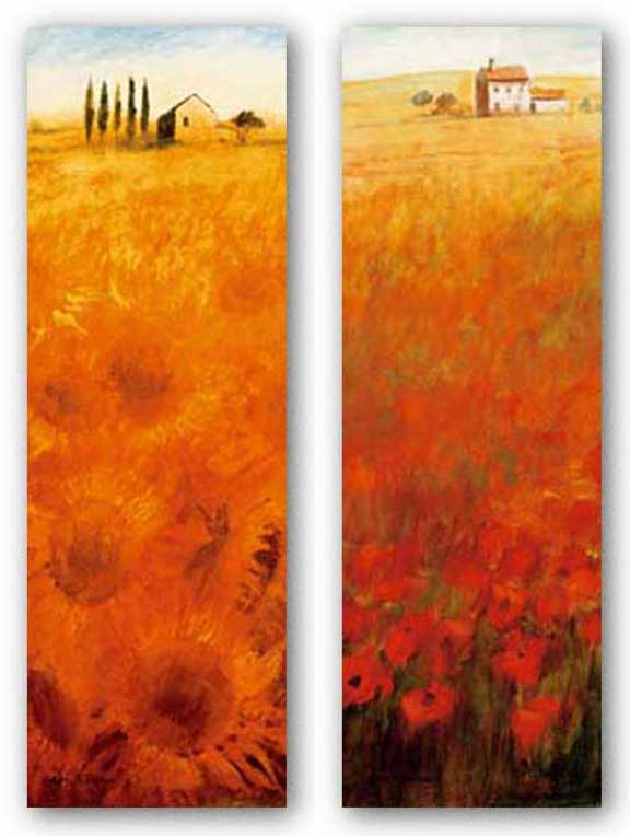 Colors Of Summer-Fields of Gold Set by Ken Hildrew