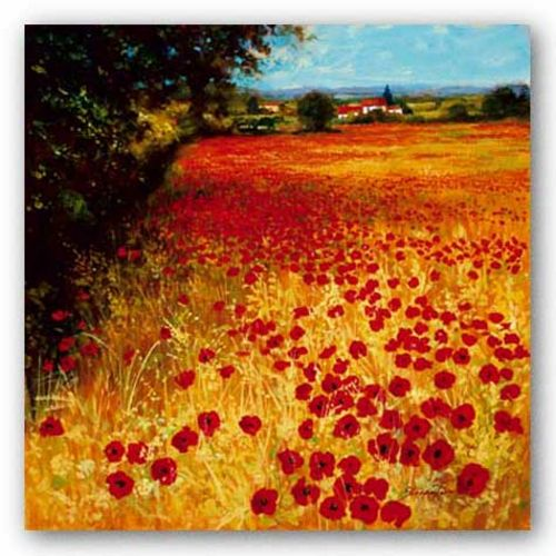 Field Of Red And Gold by Steve Thoms