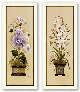 Orchid Set by Constance Lael