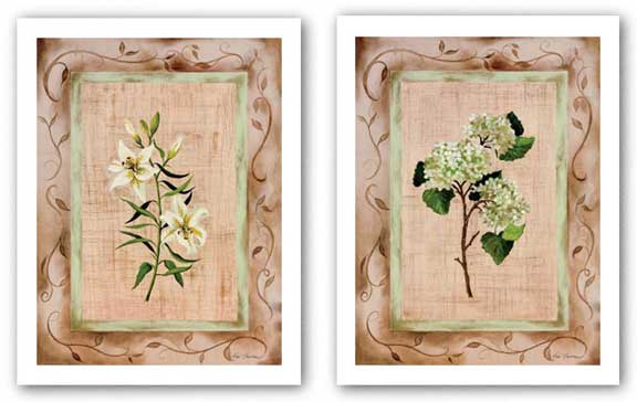 Country Lily amd Hydrangea Set by Paige Houghton