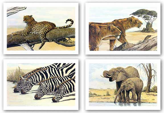 Resting Leopard-Hunting Lions-Four Zebras Drinking-Elephants By The Waterhole Set by Charles Berry