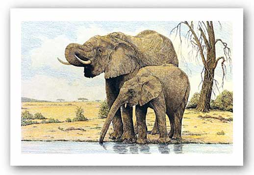 Elephants By The Waterhole by Charles Berry