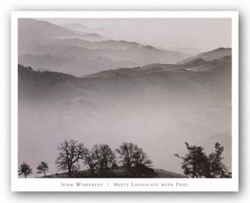 Misty Landscape with Pool by John Wimberly