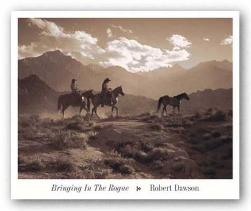 Bringing In The Rogue by Robert Dawson