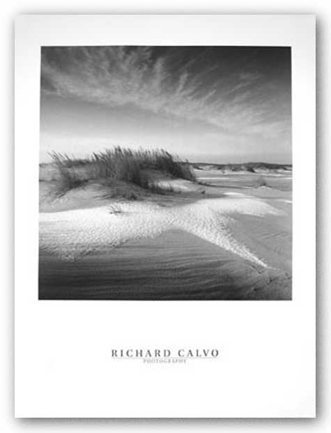 Sandy and Snow by Richard Calvo