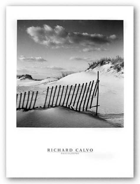 The Color Of Dreams by Richard Calvo