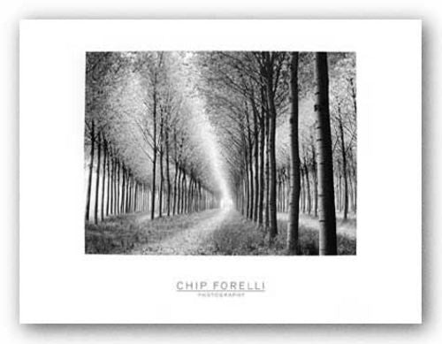Tree Parade by Chip Forelli