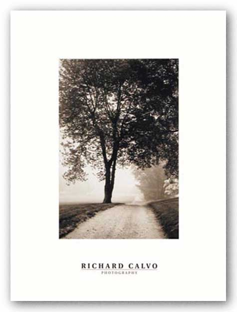 Country Road by Richard Calvo