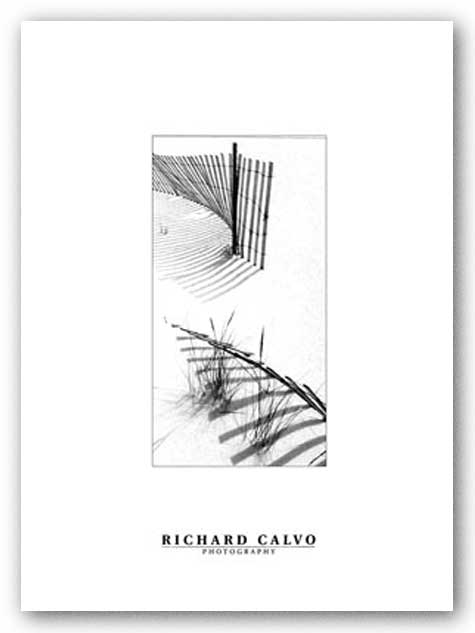 Snowfence En Passant by Richard Calvo