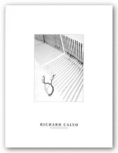 Snowfence and Branch by Richard Calvo