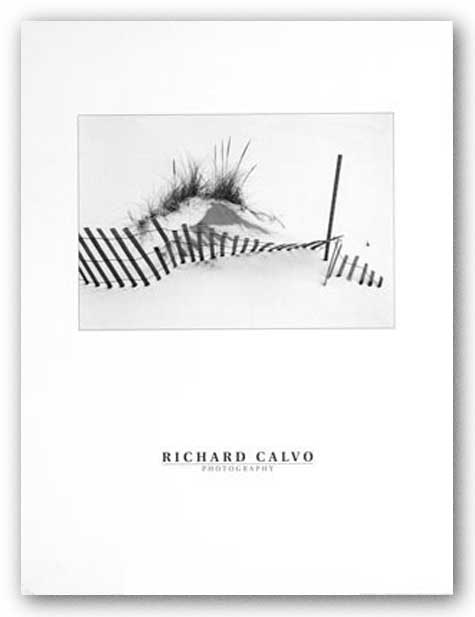 Snowfence by Richard Calvo