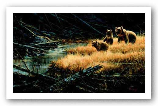 Yellowstone Grizzlies by Paco Young