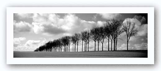 Somme Treeline by Charlie Waite