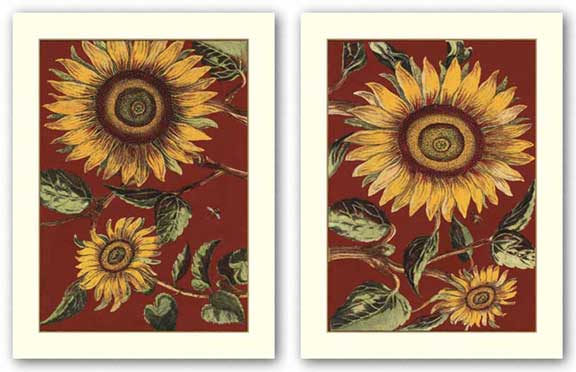 Sunflower Stars Set by Old World Prints