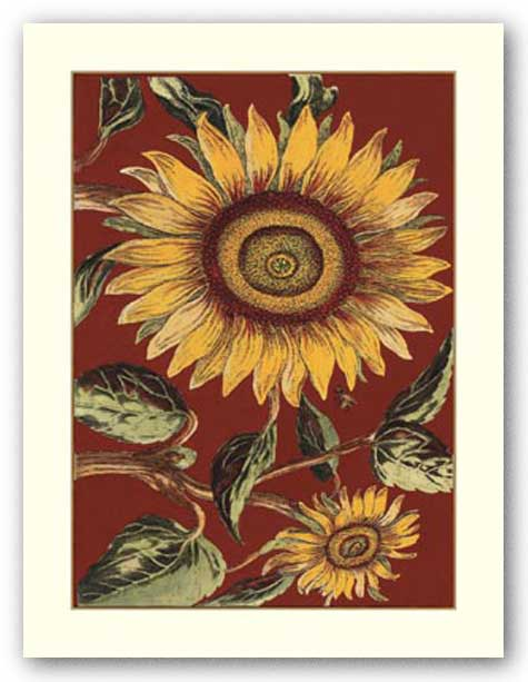 Sunflower Stars II by Old World Prints