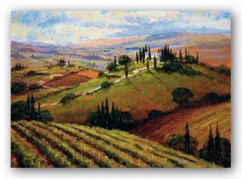 Tuscan Afternoon by Steve Thoms
