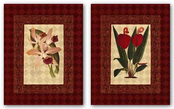 Red Botanical Set by Studio Voltaire