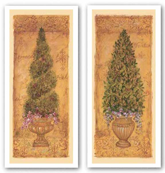 Monterey Bay Brush Boxwood and Italian Cypress Set by Shari White
