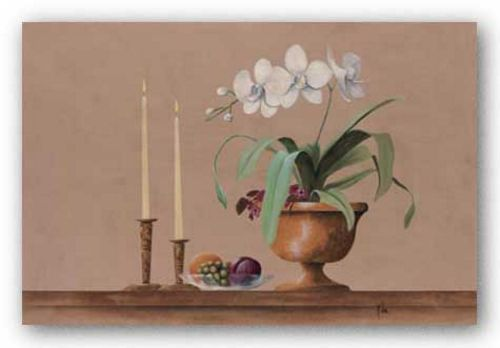 White Orchid Still Life by Wilbur