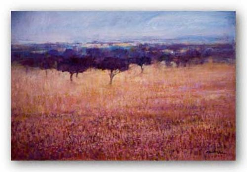 Old Olive Orchard by Ken Hildrew