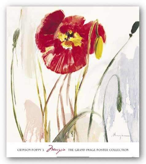 Crimson Poppy 3 by Marysia Burr