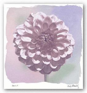 Dahlia by Judy Mandolf