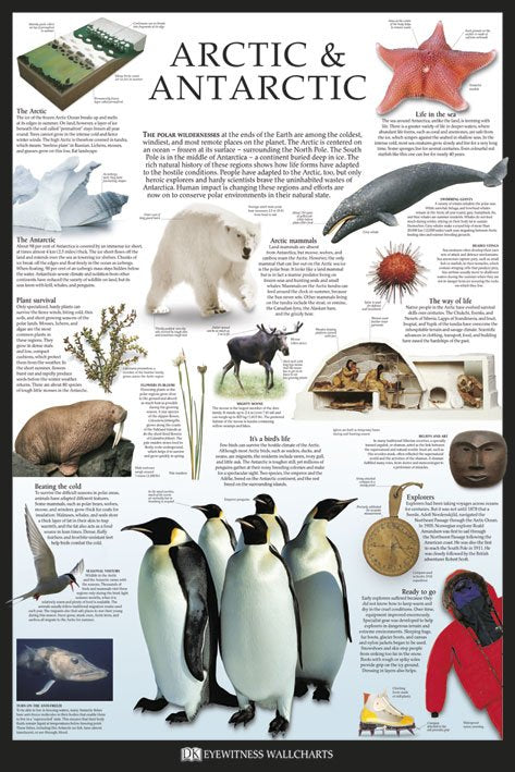 Arctic and Antarctic by Dorling Kindersley