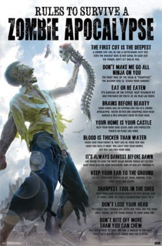 Rules to Survive a Zombie Apocalypse