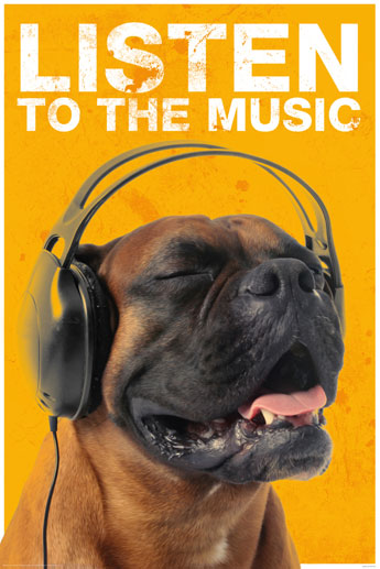 Listen to the Music - Dog With Headphones