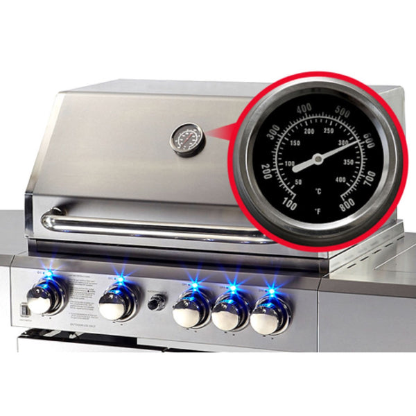 5 Burner Outdoor BBQ Grill