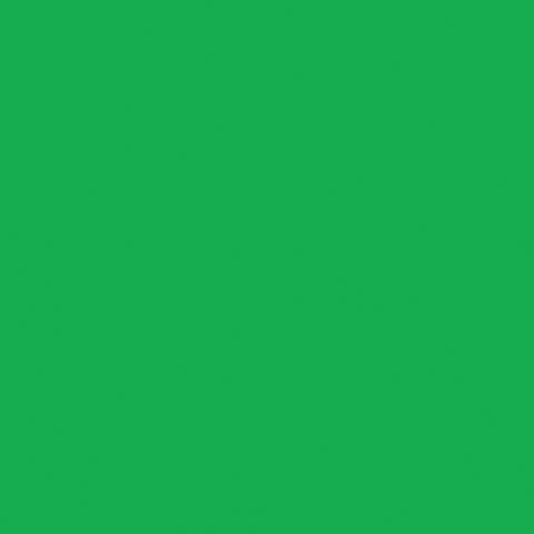 Northcott Colorworks Premium Solid Quilt Fabric Kelly Green