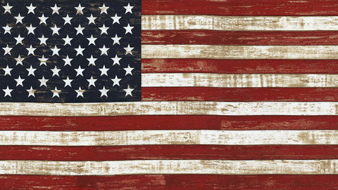 Timeless Treasures American Flag Fabric Panel