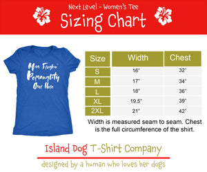 Sleeping Owls Ladies' Ultra Comfort Short Sleeve Tri-Blend Short Sleeve Tee - Island Dog T-Shirt Company