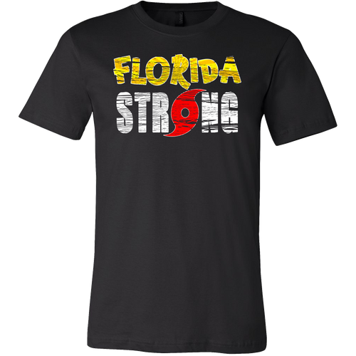 I Survived Hurricane Irma 2017 T-Shirt  Florida Strong Tee  Vintage Unisex Tropical Storm Shirt - Island Dog T-Shirt Company