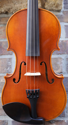 Sam's Strings Violin - Model Vln100 Package