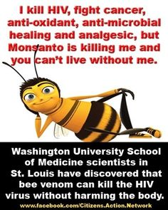 Save The HoneyBees...