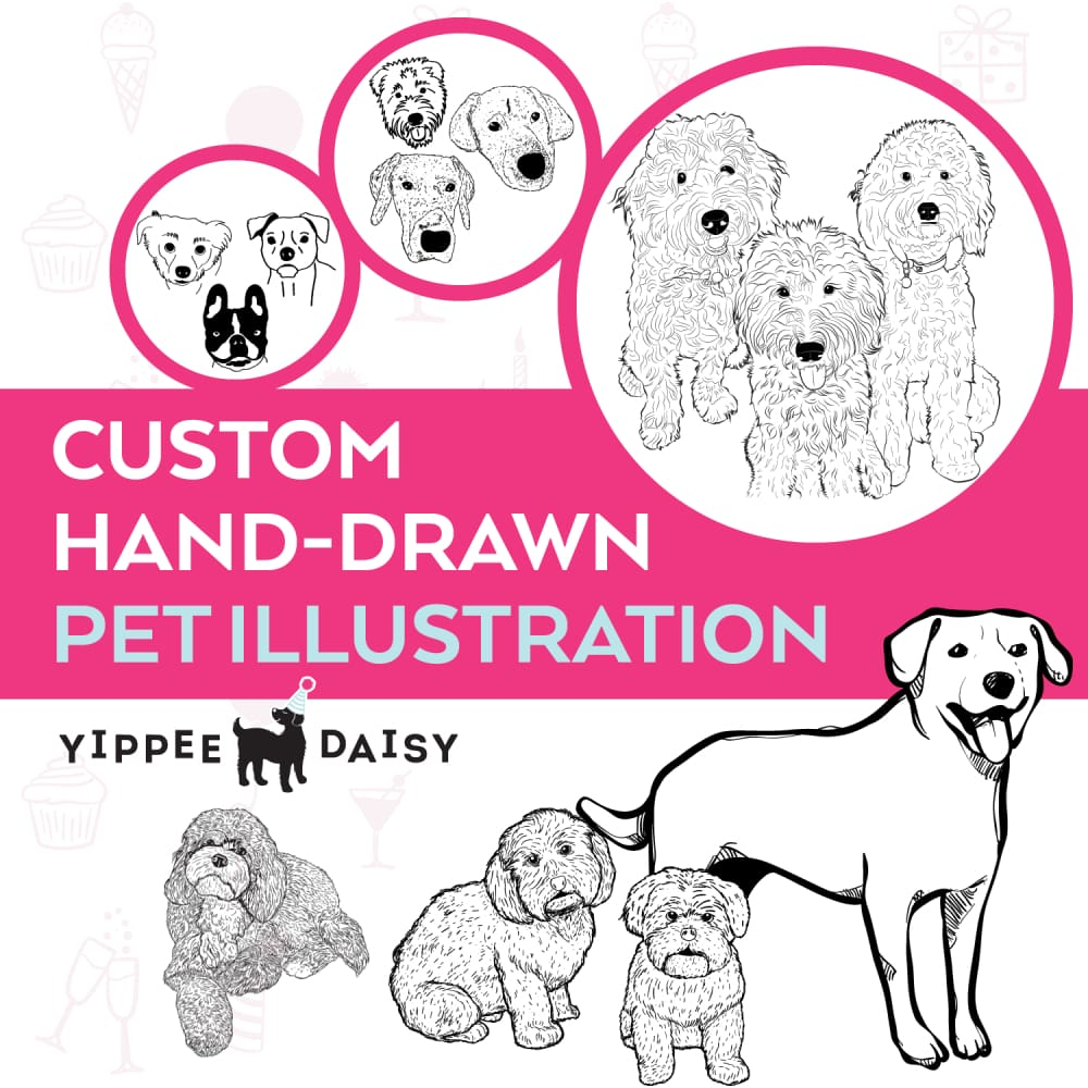 Hand Drawn Pet Illustration - Illustration