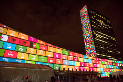 Sustainable Development Goals on a building
