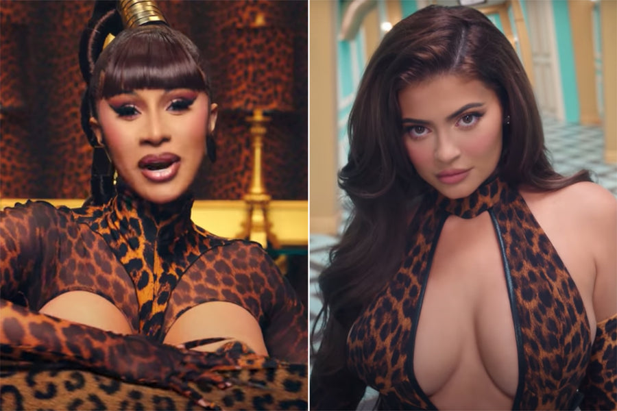 "Petition to Remove Kylie Jenner From Meg and Cardi's ""WAP"" Video Goes Viral"
